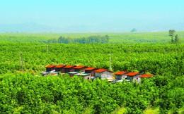 """Bầu Đức mua một công ty """"đồng hương"""" Gia Lai đang sở hữu dự án nông nghiệp tại Lào, thông qua cấn trừ khoản nợ gần 2.500 tỷ đồng"""