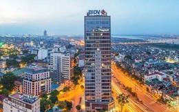 Cơ hội lớn cho NĐT: Nguồn cung văn phòng Hà Nội và TPHCM chưa bằng nổi 1/5 Bangkok, 1/6 Jakarta