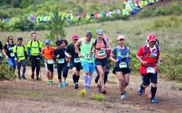 Nhiều CLB thể thao doanh nghiệp góp mặt tại Đà Lạt Ultra Trail 2018