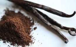 Thế giới đang trong cơn khủng hoảng Vanilla