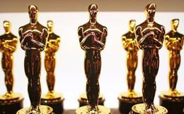Để trở thành Phim hay nhất Oscar, chỉ nhiều phiếu bầu nhất là chưa đủ!