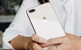 """Thị trường iPhone Việt: Cơ hội của """"người cũ"""" và """"tay chơi"""" mới"""