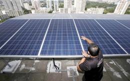 Microsoft đang mua điện năng lượng mặt trời trên các mái nhà tại Singapore