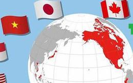 Hiệp định CPTPP: Việt Nam phải cải cách mạnh mẽ hơn để hưởng lợi