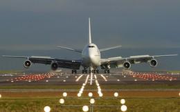 """""""Cây tre"""" Bamboo Airways tiến vào đường đua hàng không: Thị trường ngách mang tên du lịch và bài học """"Nhỏ mà có võ"""" của Vietjet Air"""