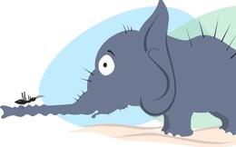 """Công ty """"to như voi"""" dễ chết bất đắc kì tử nếu bỏ quên tinh thần của các startup """"bé như con kiến"""""""