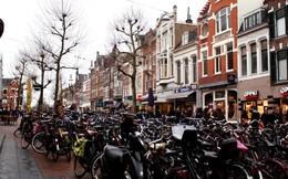 Bí quyết xanh của một thành phố ở Hà Lan: Xe đạp chiếm 65%, hơn một nửa lượng rác thải được tái chế, sử dụng 1.500 tấm pin mặt trời