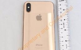 Lộ ảnh iPhone X vàng sang chảnh mà Apple giấu tịt, chưa chịu tung ra