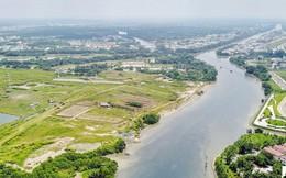 Thành ủy TPHCM yêu cầu hủy hợp đồng chuyển nhượng 30ha đất dự án Phước Kiển cho Quốc Cường Gia Lai