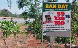 """""""Sẽ có rủi ro khi mua đất nền sốt nóng tại các đặc khu"""""""