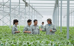 Để trở thành DN nông nghiệp công nghệ cao, doanh số sản phẩm nông nghiệp công nghệ đạt tối thiểu 60%/tổng doanh thu, 2,5% nhân lực làm R&D
