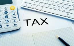 Thuế thu nhập doanh nghiệp còn 15 – 17%: Ngân sách không ảnh hưởng, thị trường đã hưng phấn cho dù chỉ là dự kiến