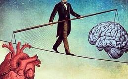 Chọn con tim hay là nghe lý trí: Những quyết định lý trí nhất cũng luôn bị chi phối bởi cảm xúc
