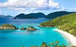 Rao bán cả đảo, đất lâm nghiệp tại 3 đặc khu bất chấp lệnh tạm dừng