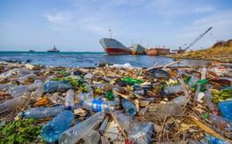 Startup Mexico giúp biến 2 tấn rác nhựa thành nhà ở