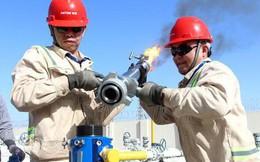 OPEC: Thế giới đã thoát cảnh thừa đầu