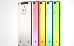 iPhone (2018) sẽ có các lựa chọn màu sắc bắt mắt như xanh biển, vàng hay hồng để thu hút giới trẻ