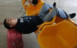 Khoa học chứng minh ngủ nướng vào cuối tuần có thể kéo dài tuổi thọ