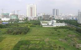 Đến 2020, Hà Nội vẫn còn hơn 51% đất nông nghiệp