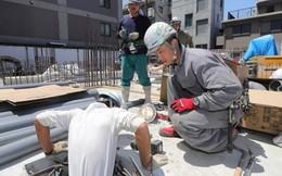 Săp tới, lao động xuất khẩu sang Nhật Bản sẽ không cần biết tiếng Nhật?