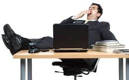 Làm gì khi sếp của bạn là một kẻ lười biếng?