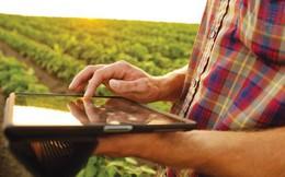 3 điều cần làm để ứng dụng blockchain vào nông nghiệp, có thể giúp người dùng Âu Mỹ cũng có thể truy xuất được nguồn gốc nông sản Việt