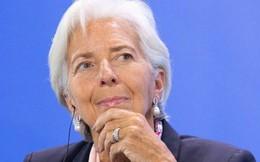 IMF: Chính sách thương mại của ông Trump có thể làm tổn thương kinh tế Mỹ