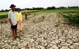 Biến đổi khí hậu, 1,7 triệu người rời khỏi đồng bằng Sông Cửu Long