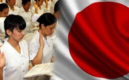 Bộ LĐTBXH: Tỷ lệ thực tập sinh Việt Nam bỏ hợp đồng, cư trú bất hợp pháp cao nhất trong các nước phái cử người sang Nhật Bản