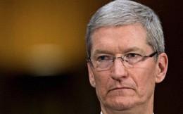 """""""Cơn sóng ngầm"""" nào khiến nhân viên Apple không mấy tin tưởng vào CEO Tim Cook?"""
