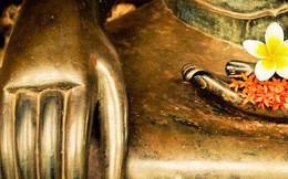 Dù Phật Tổ để lại nhiều giáo lý, nhưng chỉ cần nhớ 3 điều là có được hạnh phúc cả đời