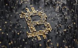 Không chỉ Bitcoin, hàng nghìn mã tiền số khác đang sụt giảm giá trị tới cả chục % mỗi ngày