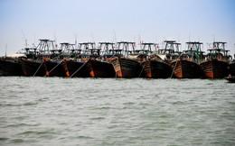 Trung Quốc đang vét sạch tài nguyên biển và thống trị thị trường hải sản bằng cách nào?