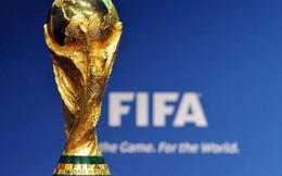 K+ bác bỏ tin đồn đang đàm phán mua bản quyền World Cup