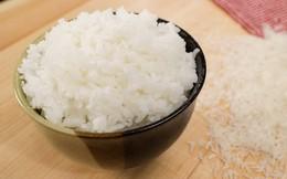 Tăng đột biến, xuất khẩu gạo Thái Lan 4 tháng đầu năm cao gấp 2 lần Việt Nam