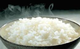 """Ăn cơm sai cách, bạn đang """"ngây thơ"""" tự sát mà không biết, hãy học cách ăn cơm đúng để sống lâu, sống khỏe"""