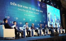 Người bán 400 tấn cam/ngày ở chợ Long Biên: Thương lái TQ biết VN có gì ngon nhất