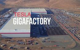 Không chỉ ở Thượng Hải, Tesla còn muốn xây thêm từ 10 tới 12 nhà máy Gigafactory trên khắp thế giới