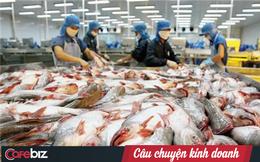 Nỗi buồn 'vua cá tra' Hùng Vương: Doanh thu sụt hơn 50%, các mảng chính đều sa sút, mỗi ngày lỗ 9 tỷ đồng