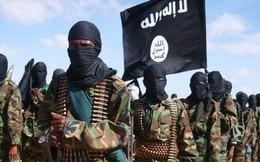 [How they do] Chuyện lạ của một tổ chức khủng bố cấm sử dụng túi nilon để... bảo vệ môi trường