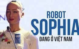 Hồ sơ 'khủng' của robot Sophia từ khi được 'làm người' cho đến khi sang Việt Nam