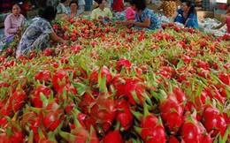 Chiến tranh thương mại Mỹ - Trung: Xuất nhập khẩu Việt Nam khởi sắc?