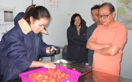 Áp lực từ cuộc chiến thương mại Mỹ - Trung: Nông sản Việt sẽ ra sao?