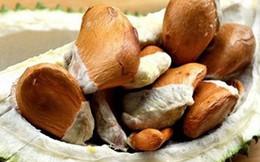 Vì sao hạt sầu riêng lên cơn sốt, bán đắt hơn quả?