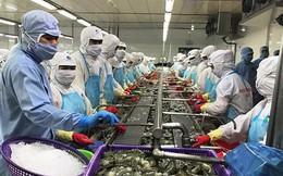 Mục tiêu xuất khẩu nông sản 40 tỷ USD: Cơ hội lớn, rủi ro cao