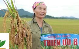 """Quảng cáo """"láo"""" khiến nông dân thiệt hại 600 tỷ đồng, doanh nghiệp nói gì?"""