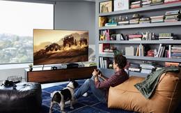 Samsung QLED Q6F – TV giá tốt, công nghệ đỉnh cao, tính năng độc đáo