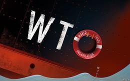 Nhiệm vụ bất khả thi: Giải cứu WTO