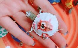 """Nở rộ trào lưu bán rùa mini sơn đủ màu trên mạng xã hội, """"Nhà Rùa học"""" Hà Đình Đức lên tiếng cảnh báo"""
