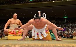 Một trong những bí mật bất ngờ để võ sĩ sumo Nhật Bản có cân nặng gấp 3-4 lần người thường: Bỏ bữa sáng